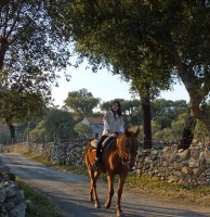 Horseback ride package - Min. 2 Nights